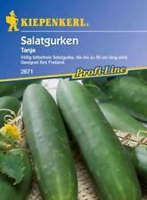 Kiepenkerl - Salatgurken * Tanja * völlig bitterfreie Gurkensorte - Gurke