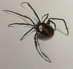 ORIGINAL ARTWORK | 3-d SPIDER |Outsider Art | Pen & Ink | Dark | INSECT | Crawly