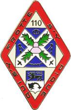 110° Régiment d'Infanterie, losange, retirage amicale 2010, Boussemart (1543)