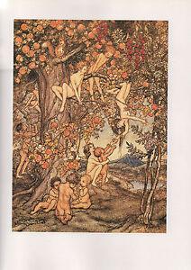 Arthur Rackham Print  - A Wonder Book By Nathaniel Hawthorne