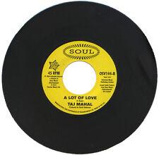 """TAJ MAHAL  """"A LOT OF LOVE""""   60's NORTHERN SOUL / CLUB CLASSIC    LISTEN!"""