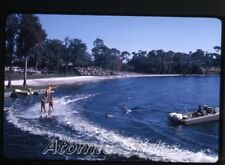 1965 kodachrome photo slide Florida Cypress Gardens #2      FL48