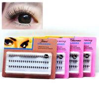 60pcs 8/10/12/14mm False Eyelash Individual Cluster Eye Lashes Extension Makeup