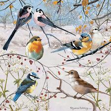 Bird Christmas Cards Ebay