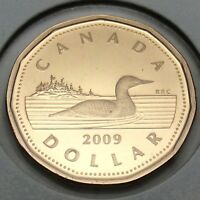 2009 Canada Proof 1 One Dollar Loonie Canadian Uncirculated Coin E226