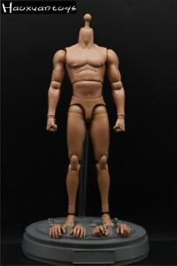 Haoxuantoys 1/6 Male Soldier Figure Muscle Body Model F 12'' HT Head Sculpt Toys