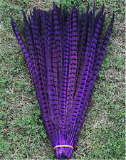 Natural pheasant tail feathers 10-100 Pcs 30-35 cm / 12-14 inch Wholesale