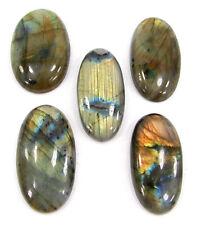 209.40 Ct Natural Labradorite Loose Gemstone Cabochon 5 Pcs Lot Stone - ZS5767