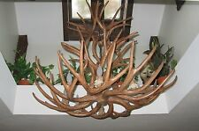 REPRODUCTION MULE DEER ANTLER CHANDELIER, LAMPS, RUSTIC LIGHTS BY CDN, #RL4