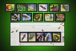 CANADA INSECTS PAPER WASP BUG DRAGONFLY BEETLE  + COVER COMPLETE SERIES