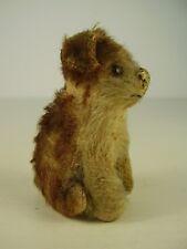 Antiker kleiner seltener Steiff Molly Hund um 1930