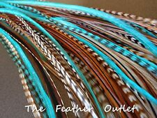 Hair Feathers Extensions, Lot of 10, Turquoise Natural Browns AQUA NAT