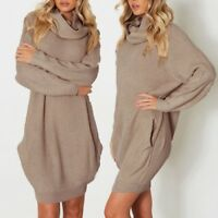 Women's Knitted Turtleneck Long Sleeve Loose Pockets Sweater Pullover Mini Dress