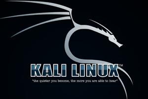 Kali Linux 2021.1 32/64 bit. Live or Install PEN Testing/Hacking DVD 600+ Tools!