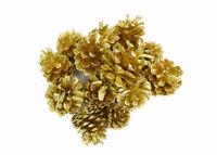 Gr 500 Pigne Naturali Laccate Oro Uso Decorativo Misura assortita 5/9 cm Natale