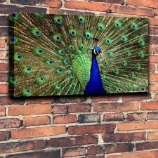 Giclee Prints Painting on Canvas Home Decor - Peacock Green Feathers #24unframed