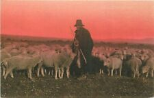 Italy Campagna Romana italian shepherd type early postcard