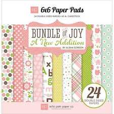 NEW ECHO PARK BUNDLE OF JOY NEW ADDITION GIRL 6X6 PAD