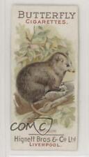 1899 Hignett Bros & Co Animal Pictures Tobacco #Opos Opossum Non-Sports Card jn1