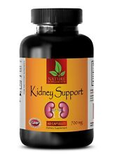 immune support mg dietary supplement - KIDNEY SUPPORT COMPLEX - nettle leaf 1B
