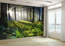View of Forest Wallpaper Mural Photo 18993927 budget paper