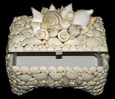 "Seashell Jewelry Treasure Chest Box ~ Assorted White Polished Shells~ 6""X9""X3"""