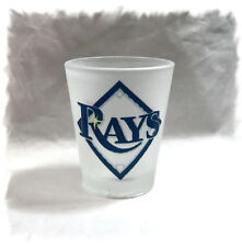 Tampa Bay Rays Frosted Shot Glass