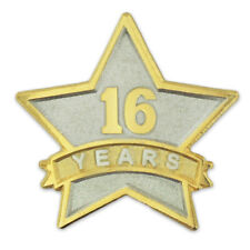 Corporate Recognition Dual Plated Lapel Pin PinMart's 16 Year Service Award Star