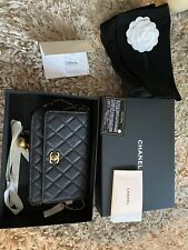 Authentic Chanel Classic Quilted Mi