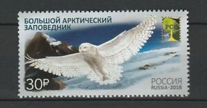 Russia 2018 Birds Owls MNH stamp