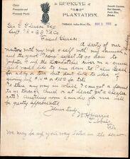 1900 Buckeye Plantation of Tibbals Indian River Florida - FANTASTIC  Letter Head