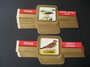 Vestalin, Aves. Collection Complete 24