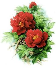 Needlework Crafts Full Embroidery Counted Cross Stitch Kits Red Peonies