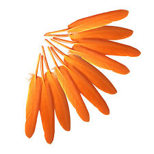 50x Orange Natural Goose Feather 4-6inch/10-15cm For Hat Party Wedding Crafts