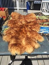 Bear Skinned Golden Brown Rug Size 55 by 40 Inches. Great Condition