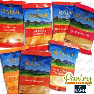 Rajah Seasoning Flavours - Beef / Chicken / BBQ / Jerk / Lamb -Full Range- 100g
