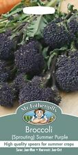 Mr Fothergills - Vegetable - Broccoli Sprouting Summer Purple - 150 Seeds