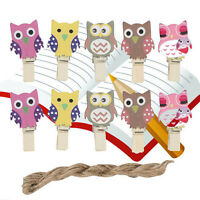 10 Mini Pegs Owl Wooden Craft Pegs Card Holder Photo Hanger Clothes Clip JC