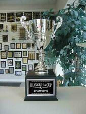 Soccer Futbol 16 Year Perpetual Award Silver Metal Cup Award Trophy J*Mcj3S