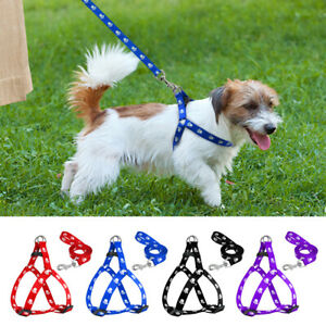 Step In Dog Harness and Lead Nylon Paw Print Pet Puppy Strap for French Bulldog