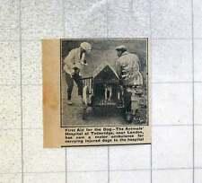 1921 Animals Hospital At Totteridge Now Using Motor Ambulance