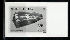 Photo Essay, Wallis Futuna Sc309 Cone Shell, Conus vitulinus.
