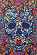 Large 3D Skull Wall Tapestry Free Shipping & 3D Glasses 75176 Day of Dead Style