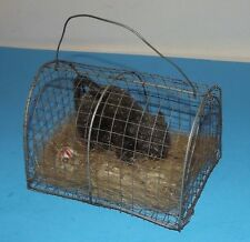 """Halloween Decoration Rat in Wire Cage with Skulls 7""""x5 Scary Mouse Rodent Animal"""