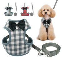 Adjustable Small Dog Puppy Pet Walking Harness Vest and Leash Set Pet Supplier