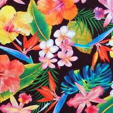 Robert Kaufman Étoileurs Métallique Imprimé Tissu Quilting couture tissu