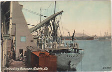 Mobile,Alabama,Unloading Bananas,Port Scene,c.1909