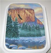 "FRANK MITTELSTADT DEER PLATE ""VALLEY OF LIGHT"" 2ND ISSU"