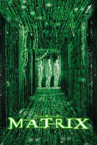 The Matrix Poster 12x18