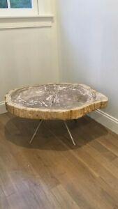 Interlude Home Petrified Wood Coffee Table